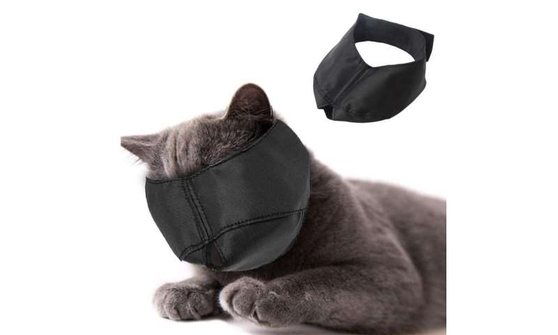 Cat muzzles: cruel or useful?