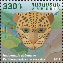 Postage stamp of Armenia with the image of a Caucasian leopard